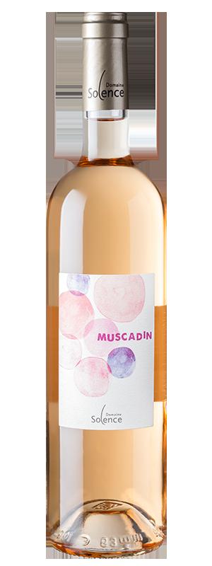 Muscadin